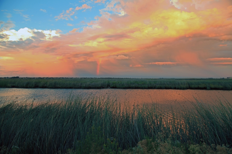 A Passing Storm In The Marsh