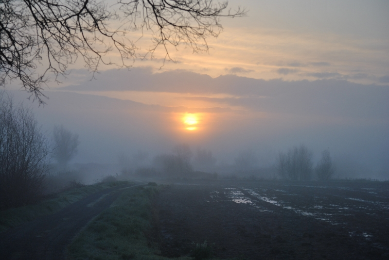 Fogging Sunrise