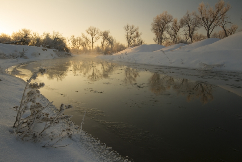 Morning On The Platte