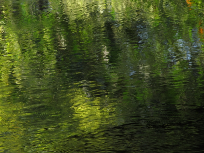 Abstract Creek Reflection2