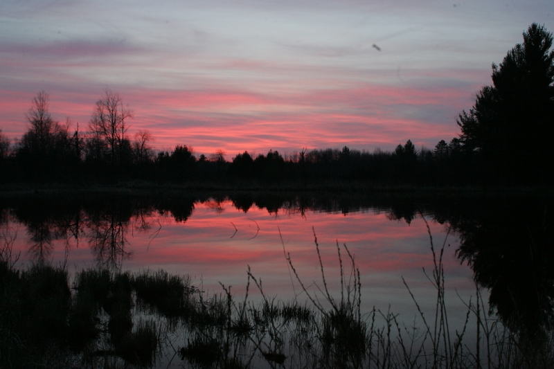 Sunrise At Beaver Pond