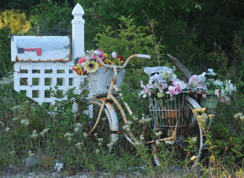 A Bicycle Built For Flowers