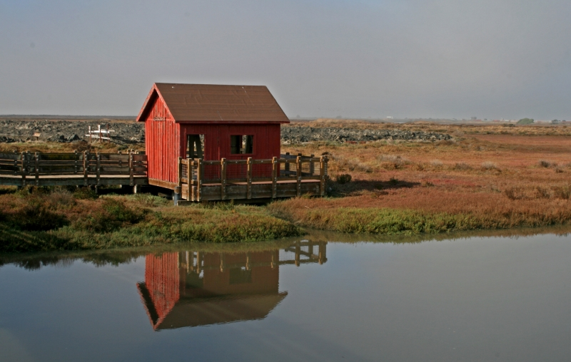 Red Cabin Reflections
