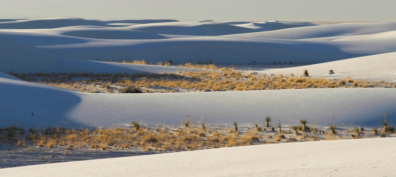 White Sands At Sunsut