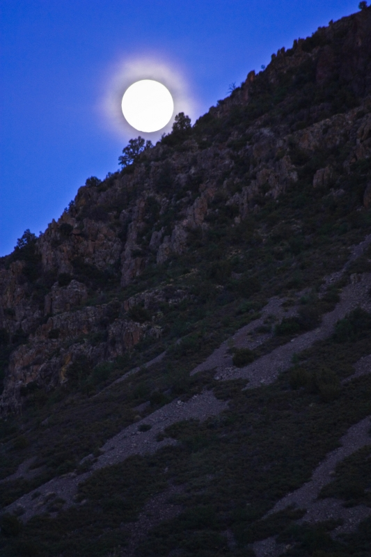 Moonrise At Fossil Springs