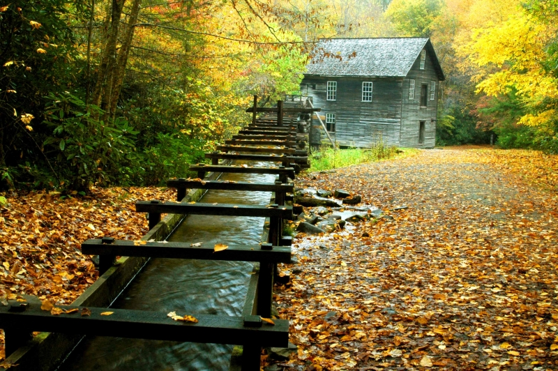 Mingus Mill In Fall