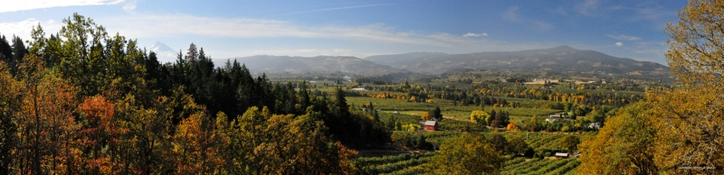 Hood River Fall Panorama