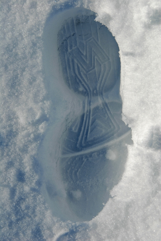 My Sneaker Print In Snow Drift