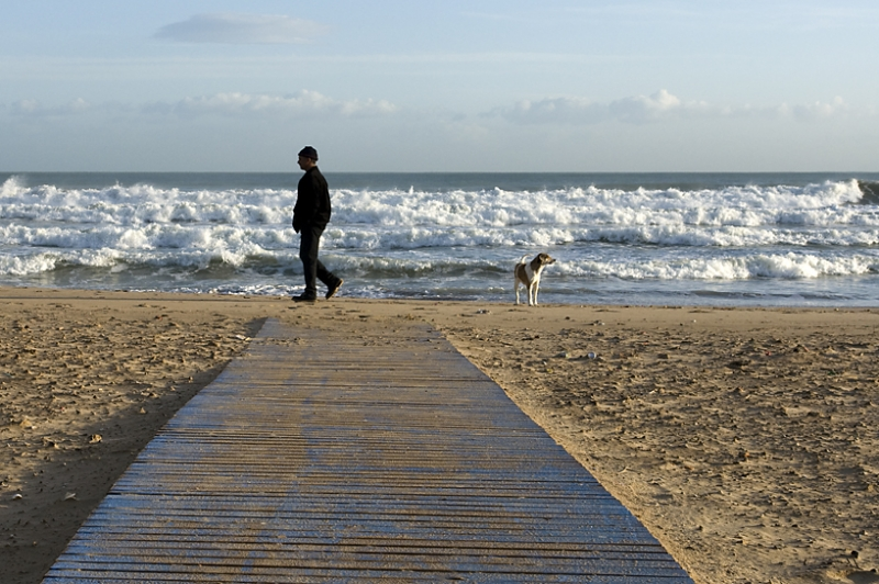 Man And Dog Along The Mediterranean Sea