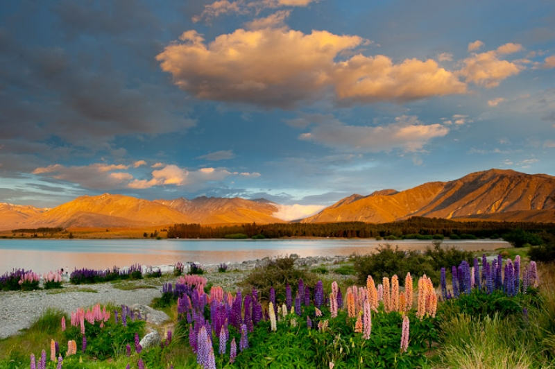 Sunset, Lake Tekapo