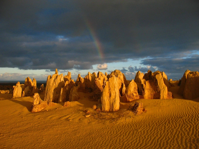 Pinnacles Desert At Sunrise