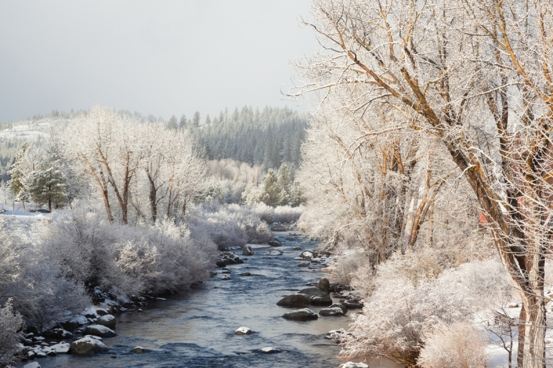 Snowy Truckee River 3