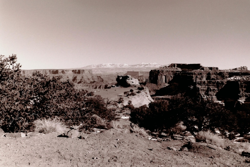 Canyonlands Rim View