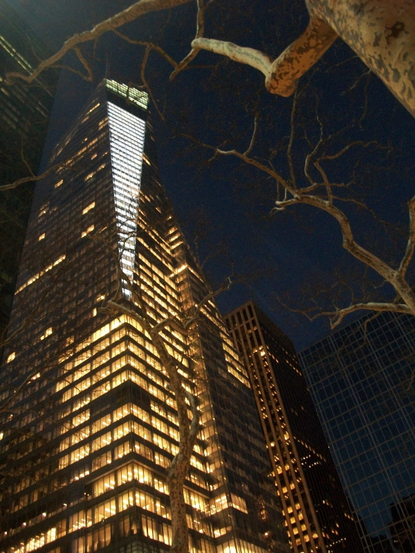 A Bryant Park Perspective