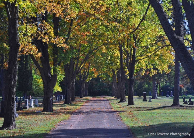 Autumn Cemetery Road