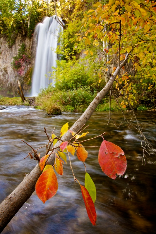 Spearfish Falls Autumn