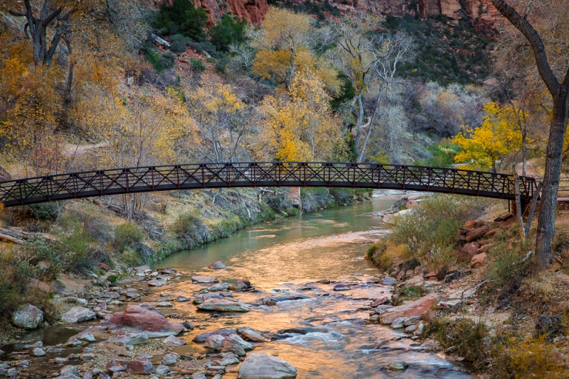 Fall Morning In Zion National Park