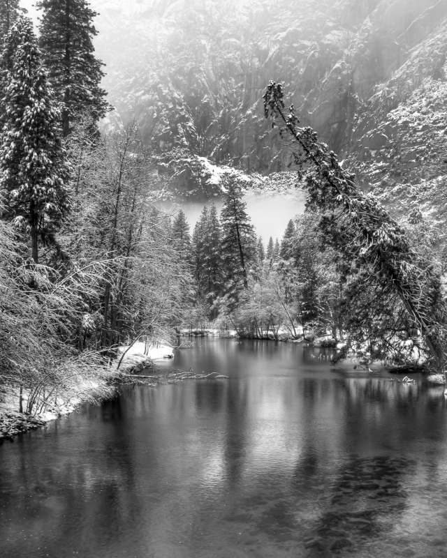Merced River In Black And White