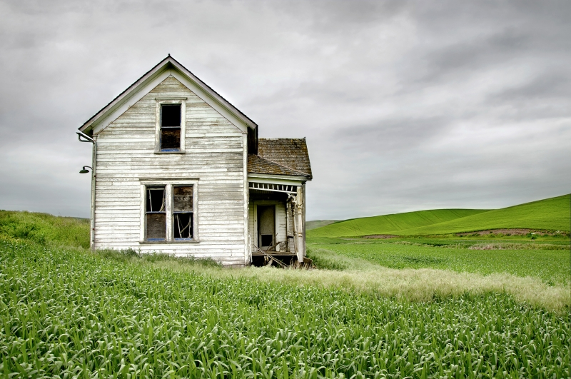 Abandoned Farm House In Wheat Field