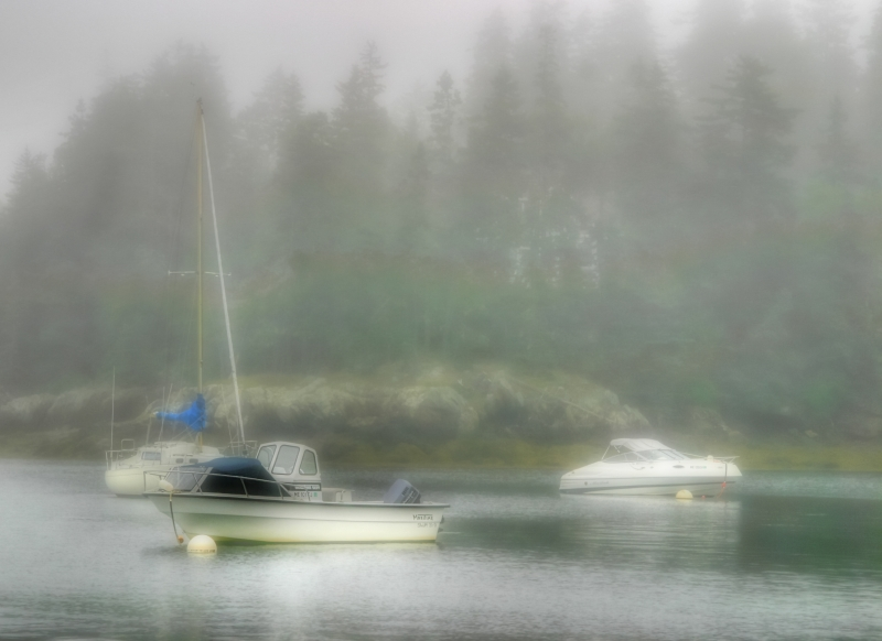 Maine In Fog
