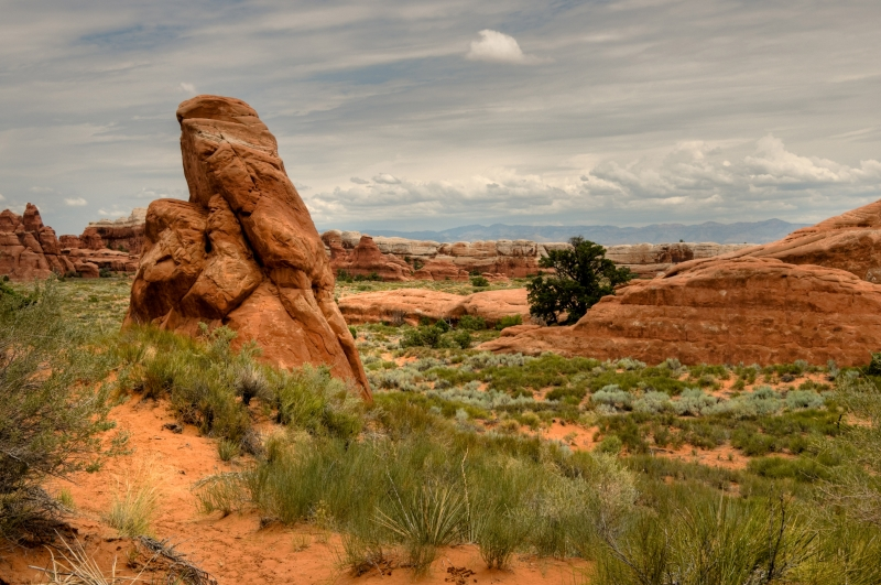 Desert View At Arches National Park