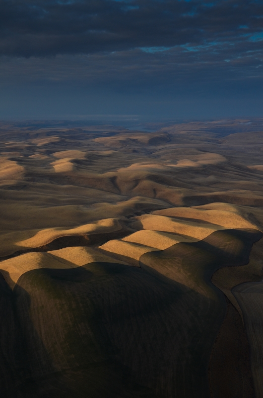 Palouse Brown