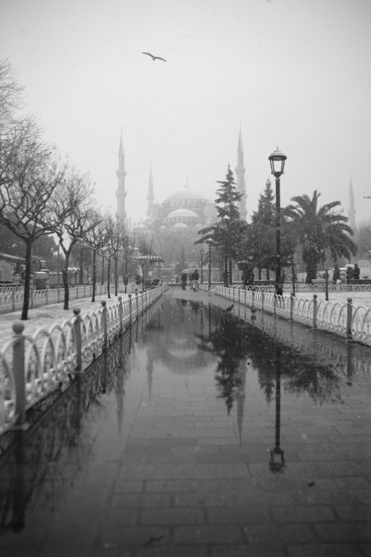 Blue Mosque Reflection, Istanbul