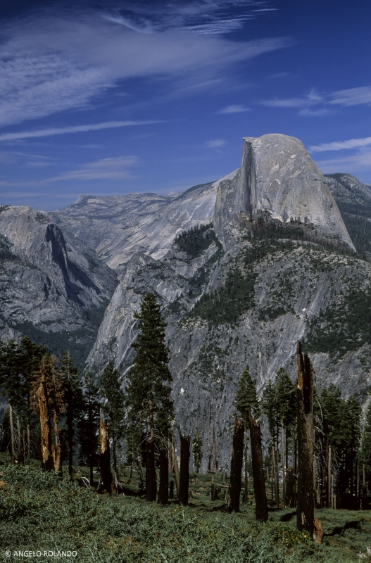 Half Dome & Yosemite Valley