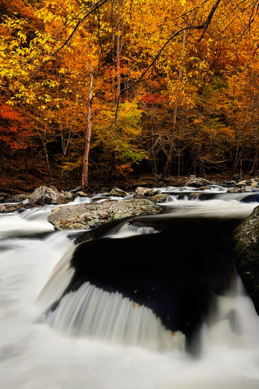 Fall River In The Smoky Mountains