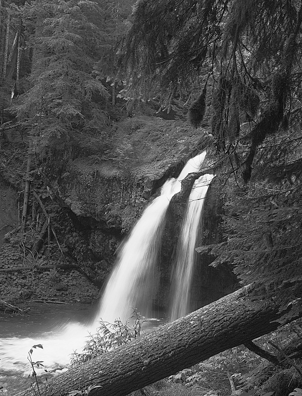 Iron Creek Falls Gifford Pinchot National Forest Washington
