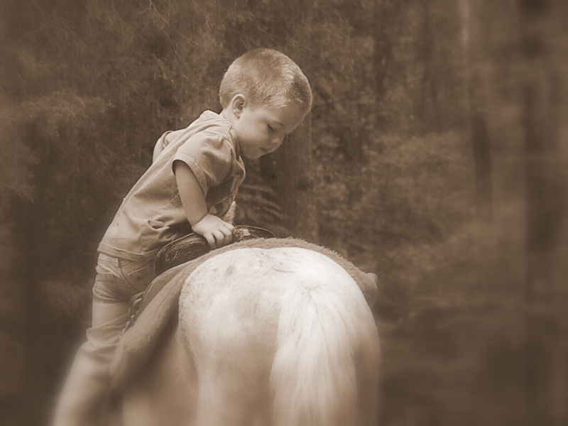 Trying To Get On His Horse