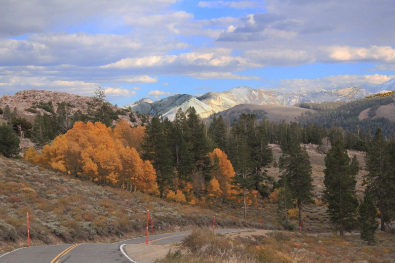 Eastern Side Of Sonora Pass