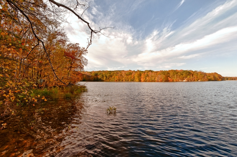 Fall, Reservoir, Branches, Water, Sky Hdr