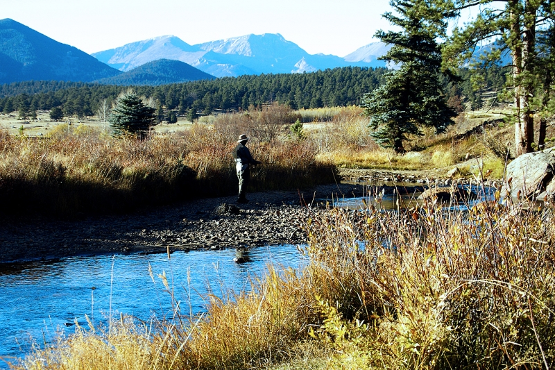 Fly Fishing In Rmnp