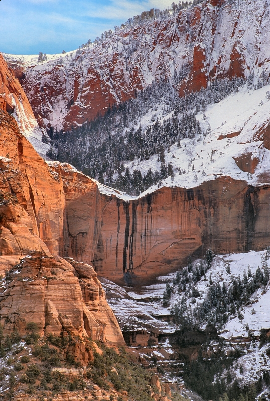 Winter In Kolob Canyon