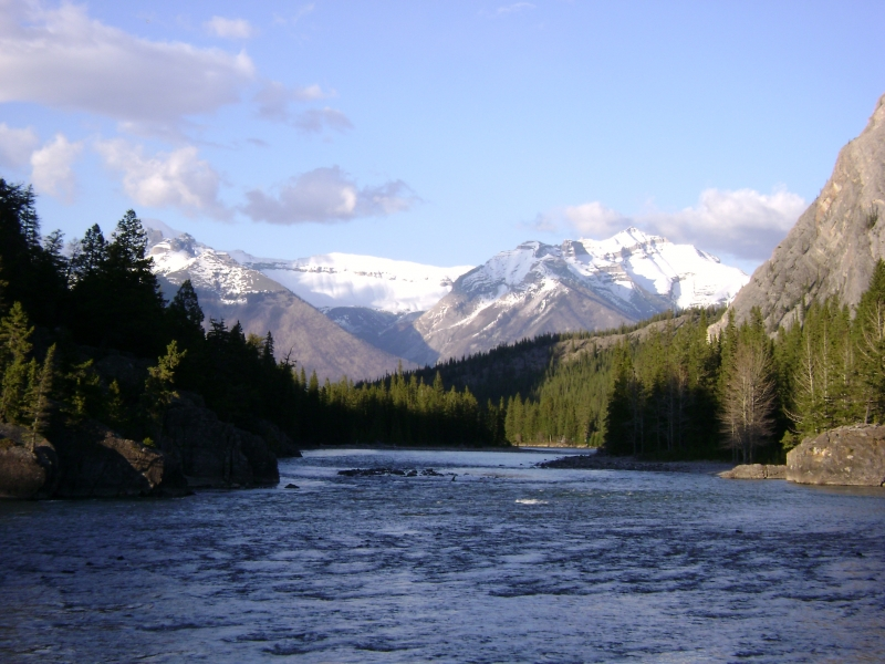 Bow River Beauty