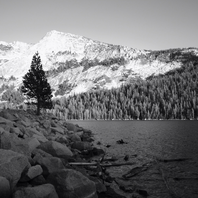 Tioga Lake, Yosemite National Park