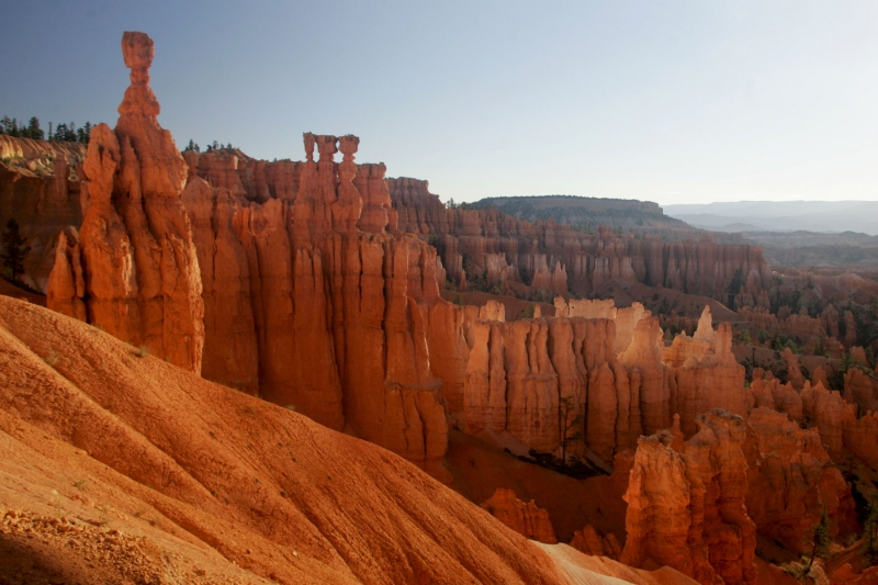 Thors Hammer And The Hoodoos