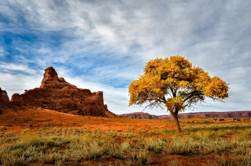 Autumn At Monument Valley