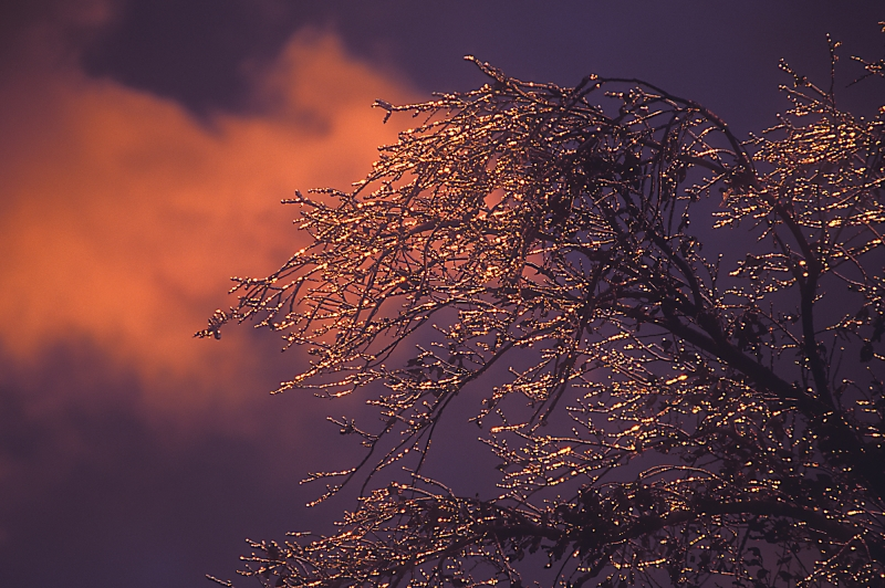 Sunset After Ice Storm