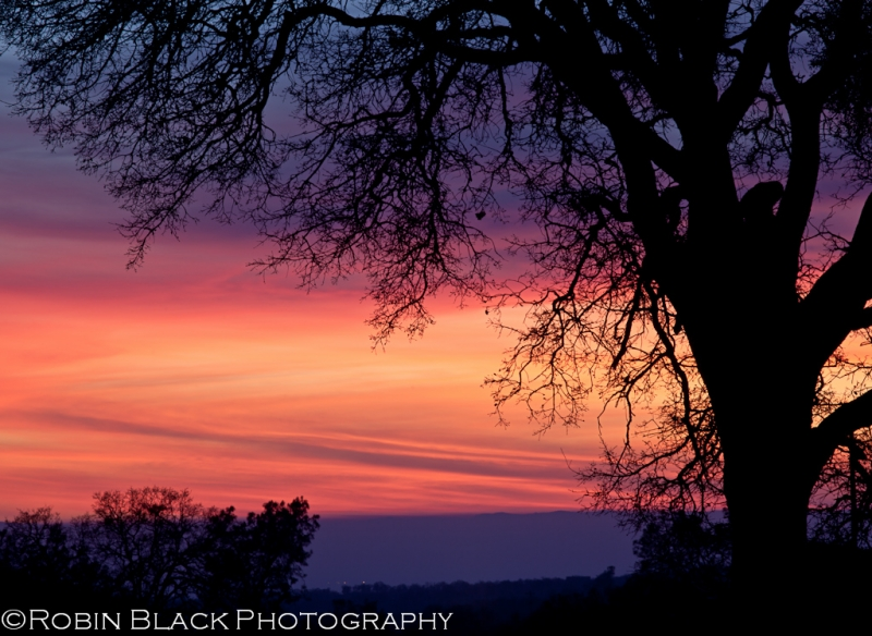 Sunset Afterglow, Catheys Valley (sierra Foothills)