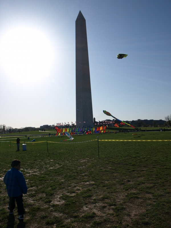 Kite In Dc