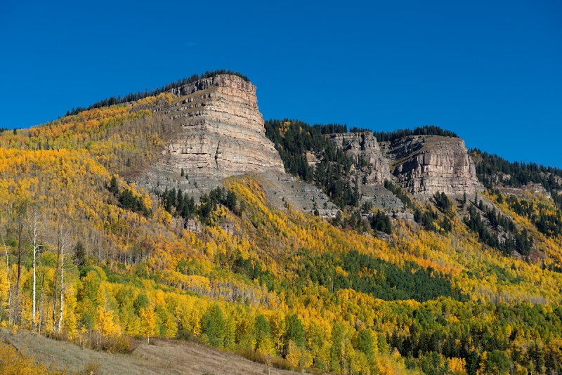 Aspens And Buttes