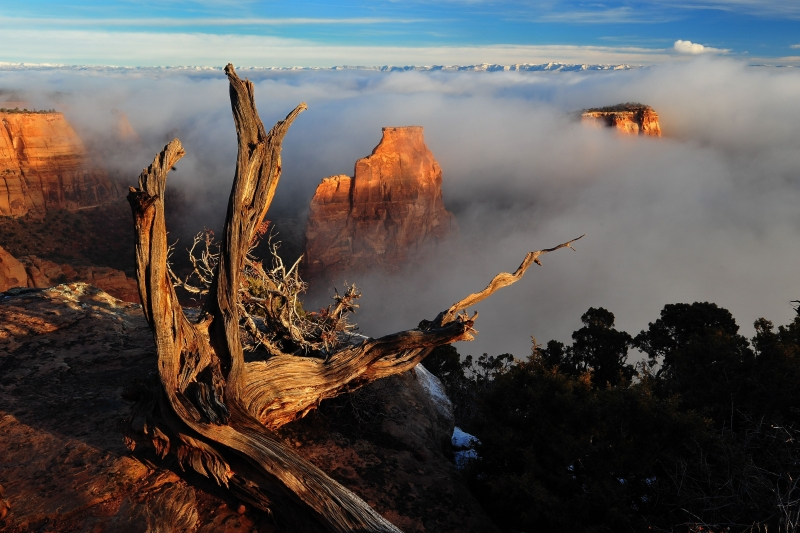 Monument Canyon Fog
