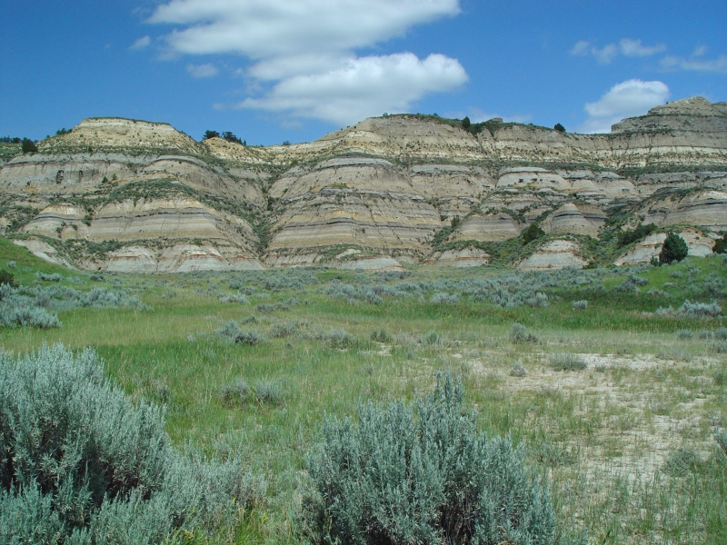 Northern Badlands In Theodore Roosevelt National Park