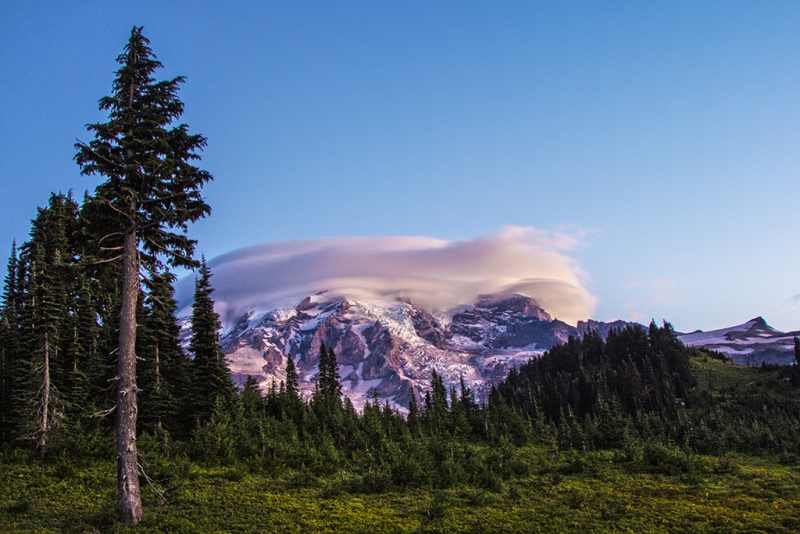 Mt. Rainier From Paradise Lodge