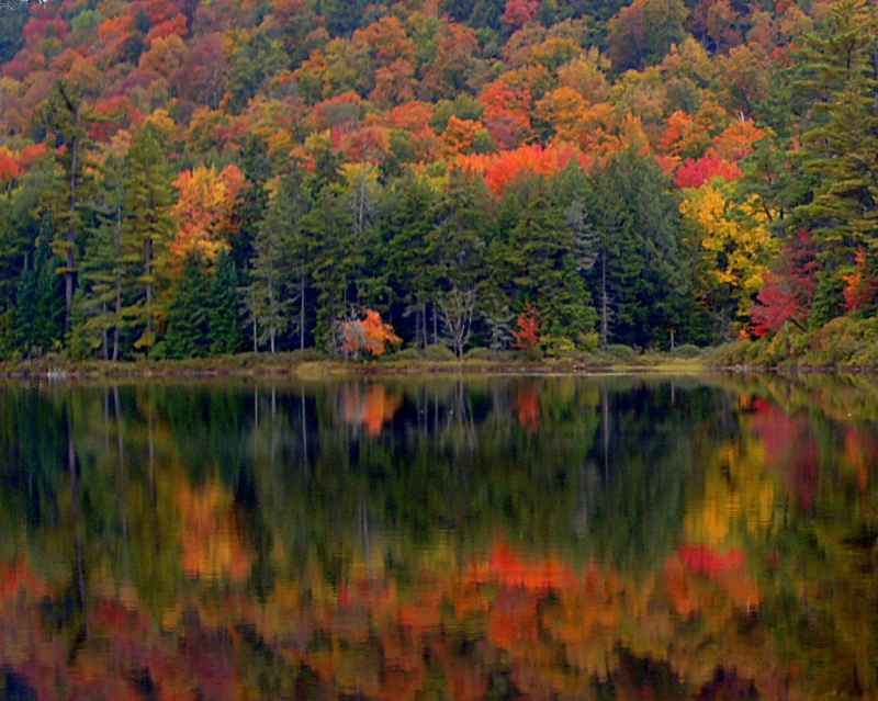 Adirondack Fall Beauty