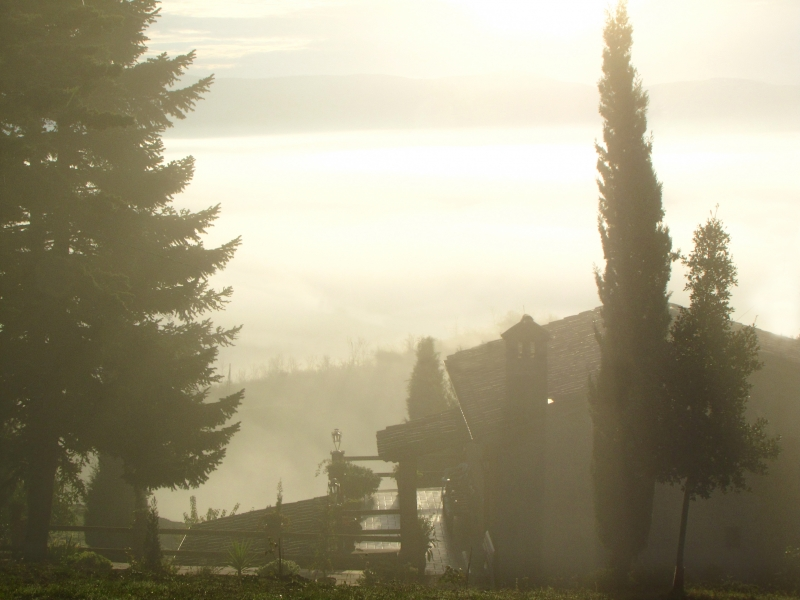 Sunrise In The Cottage