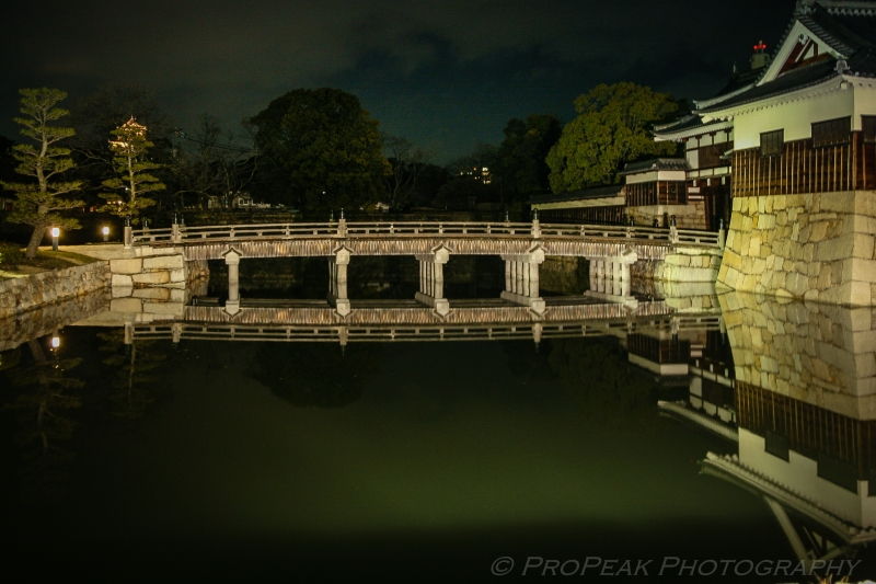 Hiroshima Castle Symmetry