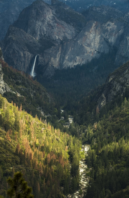 Light Rays Over Yosemite